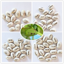 11 Kinds Optional Magic Beans 2pcs Magic White Bean Bonsai Plants Gift Plant Growing Message Word Love Office Home
