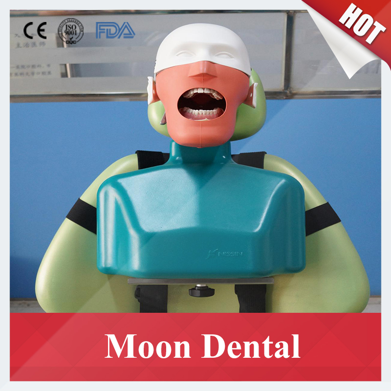 Sennior manikins Phantom Head with Torso for dental education Dental manikins Phantom Head for dentistry and dental technology другие beijing legal compass on education science and technology 2015