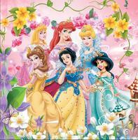 colorful Flower Pattern Jasmine Ariel Aurora Cinderella Fairy Princesses backdrops Vinyl cloth Computer printed wall backdrop