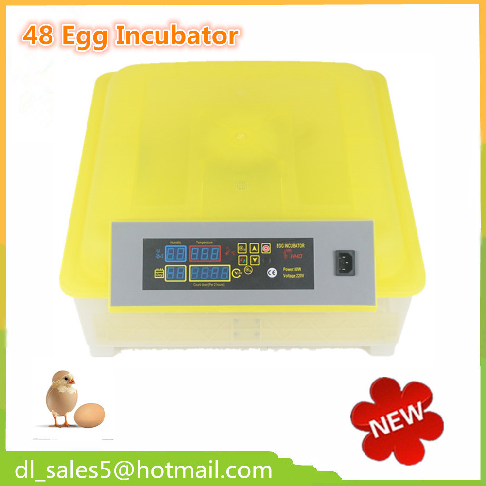Newest Hot Sale Automatic Mini Egg Incubator 48 Chicken Egg Incubators and Hatcher DL 48 chicken egg incubator hatcher 48 automatic mini parrot egg incubators hatcher hatching machines