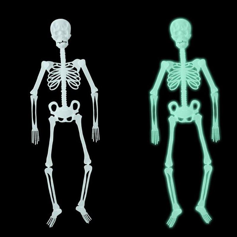 Gemütlich Menschliches Skelett Anatomie Aktivität Fotos - Anatomie ...