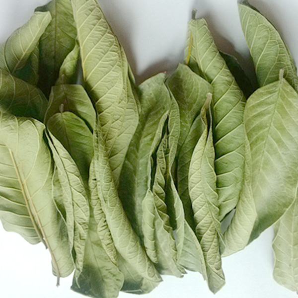 how to eat guava leaves