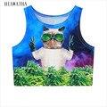 Hiawatha Harajuku Gato Carácter Impreso Tanques Mujeres del Resorte Sin Mangas Camis Camisetas Crop Tops Delgado Animal Chalecos Elástico T2701