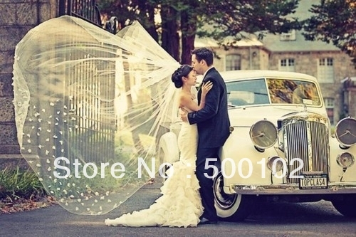 Free Shipping Ivory Two Layer Appliqued Flower Court Train Wedding Veil