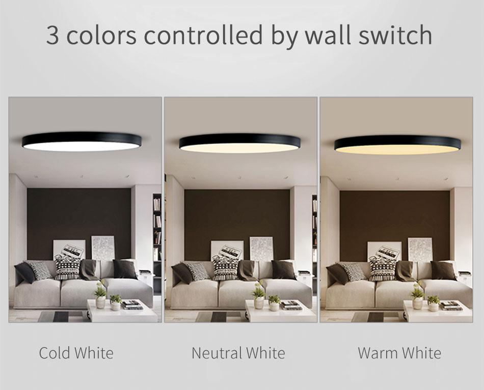 LED Ceiling Light Lamp Modern Lighting Fixture Bedroom Kitchen Foyer Simple Surface Mount Flush Panel Living Room Remote Control