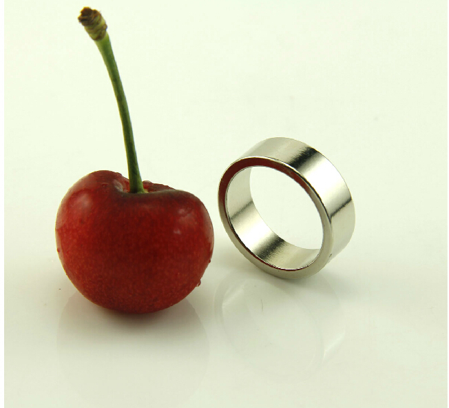 2pcs Internal Dia 18mm Rare Earth Neodymium Magnet N40 Strong Magnetic Ring Magic Prop