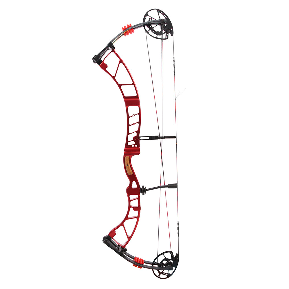 Sanlida Archery High End Target CNC Compound Bow 50 60lbs 28 5 31 5 310FPS multi