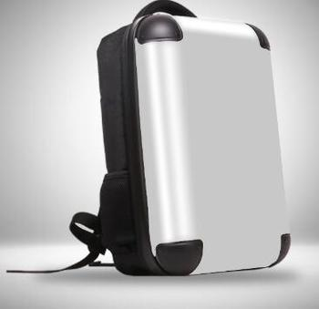 Silver Back Carry On Luggage