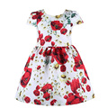 Милан творения девочка платья детская одежда 2016 костюмы для девочек платье принцессы цветочный узор девушки платье