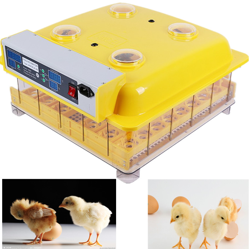New Mini Digital Chicken Egg Incubator Hatcher/Chicken,Duck,Turkey 48 Eggs Incubator JN8-48 new design digital temperature incubator pet supply duck hatcher household chicken egg incubator