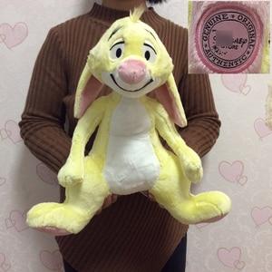 Image 5 - Free shipping Eeyore Donkey Winnie Bear Tigger Tiger Piglet Pig And Rabbit Roo Plush Toys Cute Stuffed Animals Kids Soft Doll