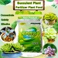 Бонсай из суккулентов  растительный компаунд  лекарственные гормоны  регуляторы  помощь для восстановления растений  питательные вещества ...