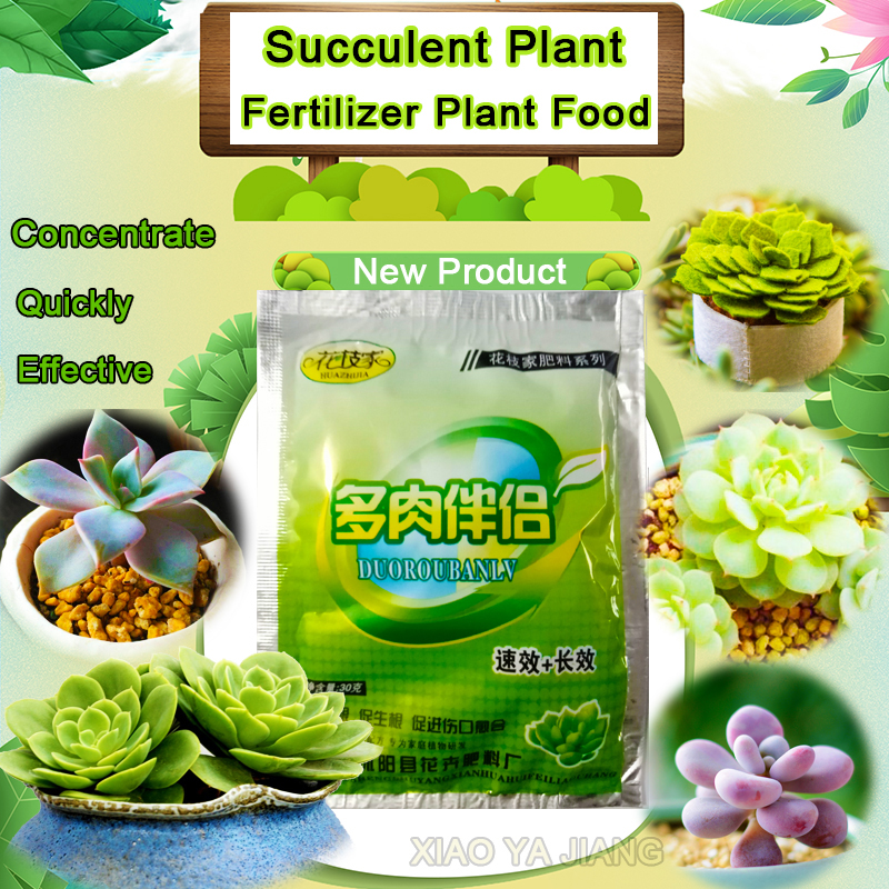 Succulents Bonsai Plant Food Compound Fertilizer Medicinal Hormone Regulators Growing Recovery Aid Garden Sufficient Nutrient