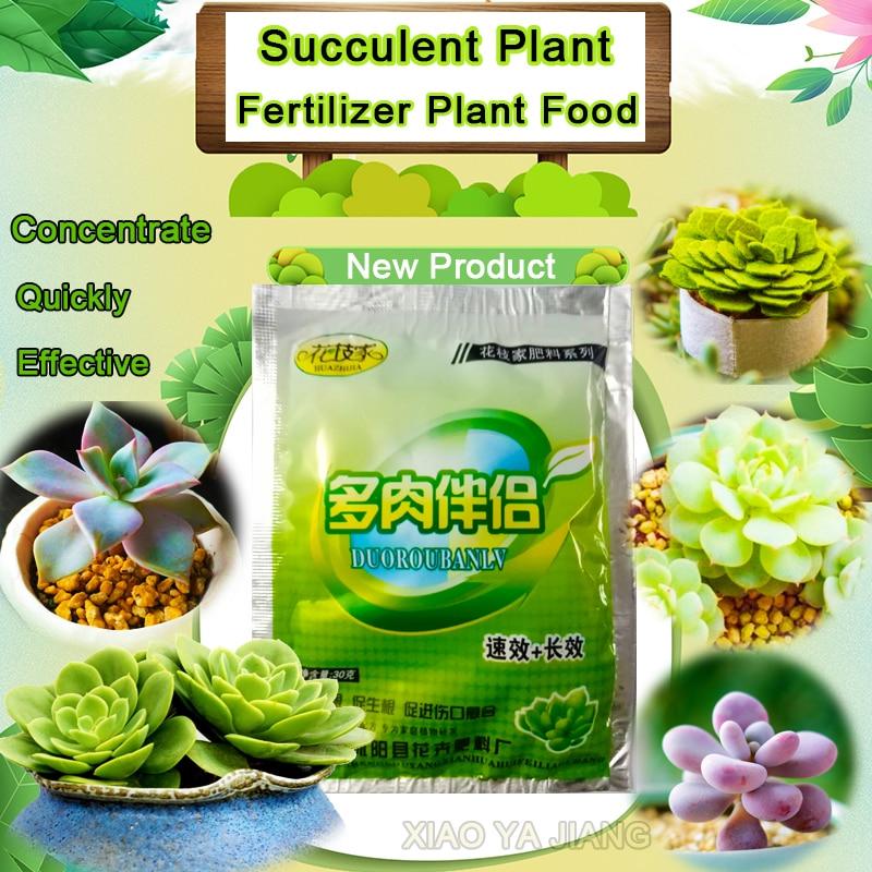 Succulents Bonsai Plant Food Compound Fertilizer medicinal hormone regulators growing recovery aid Garden sufficient nutrient(China)