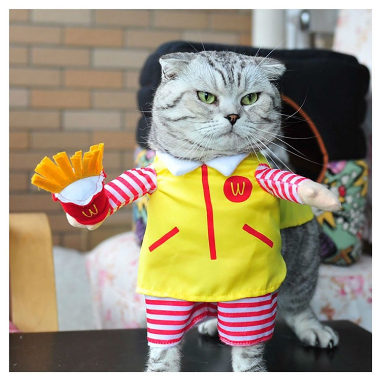 Funny Small Cats Clothes Dogs Clothing Waiter Halloween For Dress Pets Cat Costume Products katten kleding vetement chat 4