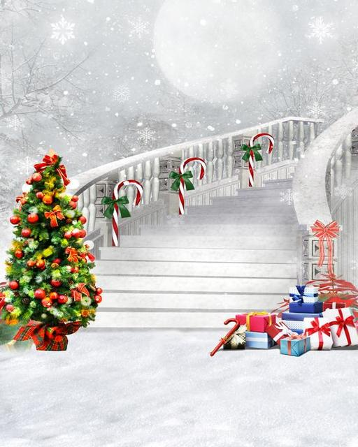 New 4x6 5ft Snowscape Photo Background Hot Selling Photography