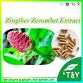 100% Natural e Puro Zingiber Zerumbet Extrair Cápsula 10:1 500 mg * 700 pcs