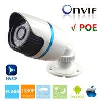 HD 1080P 2 0MP ONVIF Waterproof Outdoor IR CUT Night Vision P2P Plug And Play Mini