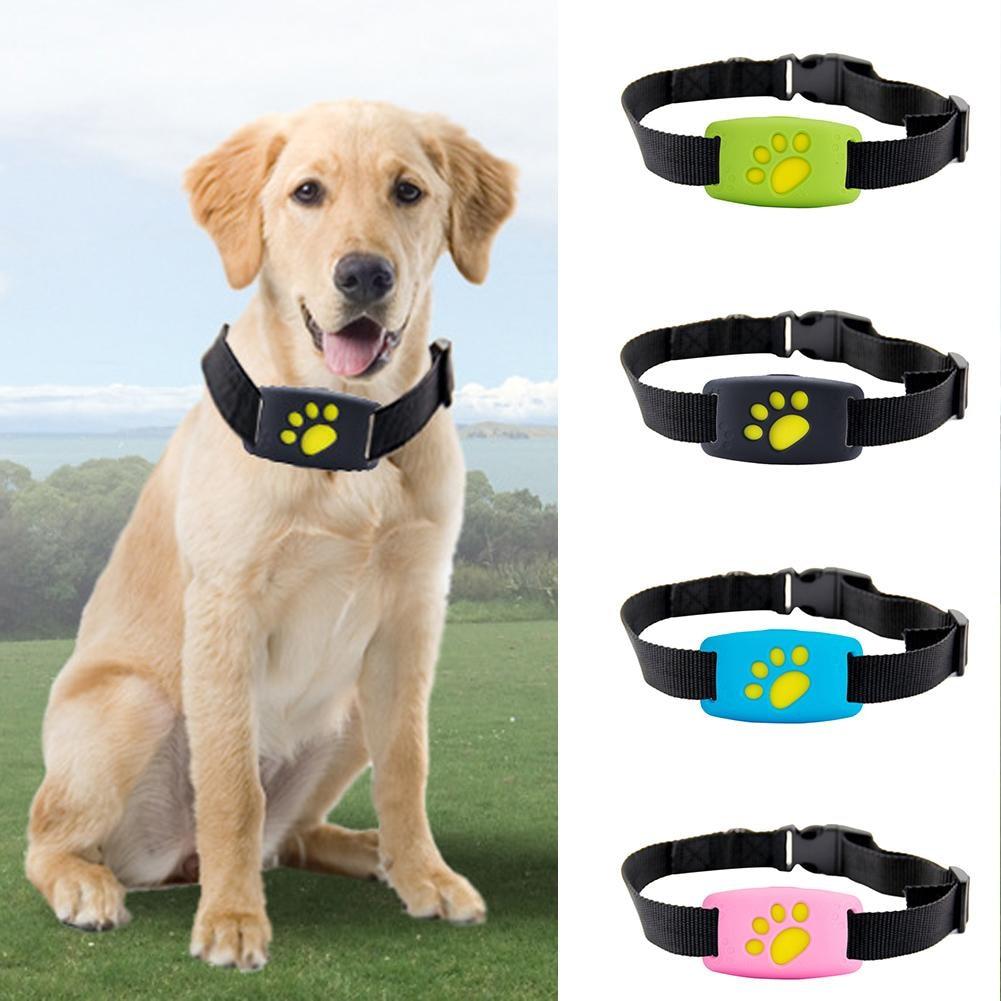 Localisateur GPS pour animaux de compagnie Intelligent Anti-perte GPS WIFI chien chat localisateur traqueur pour animaux de compagnie et moniteur d'activité animaux de compagnie suivi dispositif livraison directe