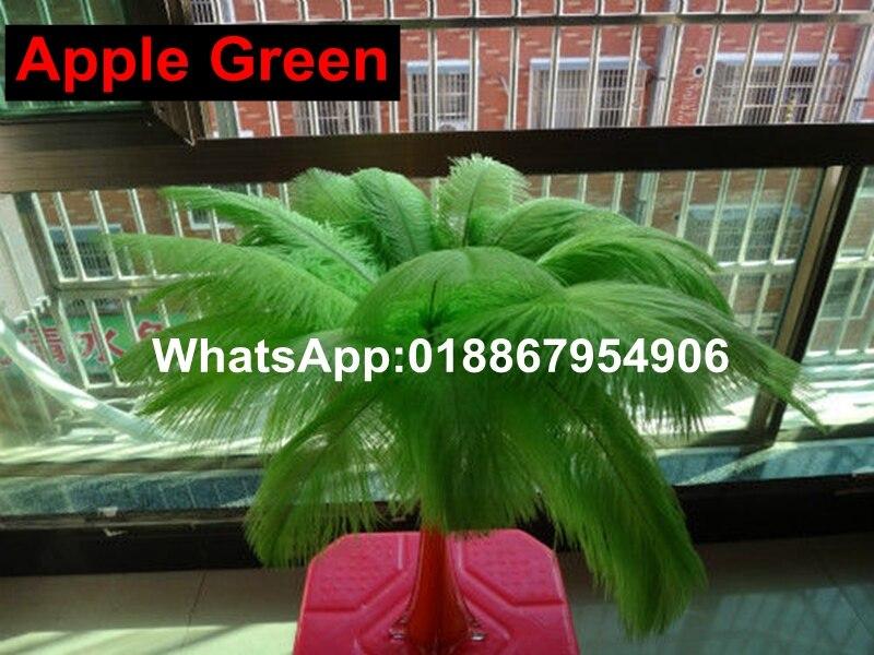 Livraison gratuite 50 PCS Apple vert plume d'autruche 50   55 cm 20   22