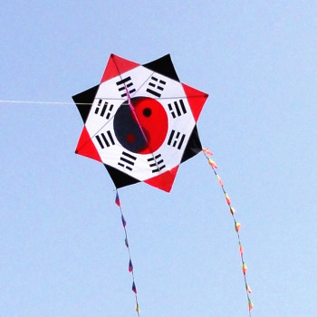 free shipping high quality eight diagrams kite line ripstop nylon fabric gossip kite toys kite flying reel adult dragon kite koi 30m beach kite flying single line octopus kite tube shaped soft kite 3d ripstop nylon fabric