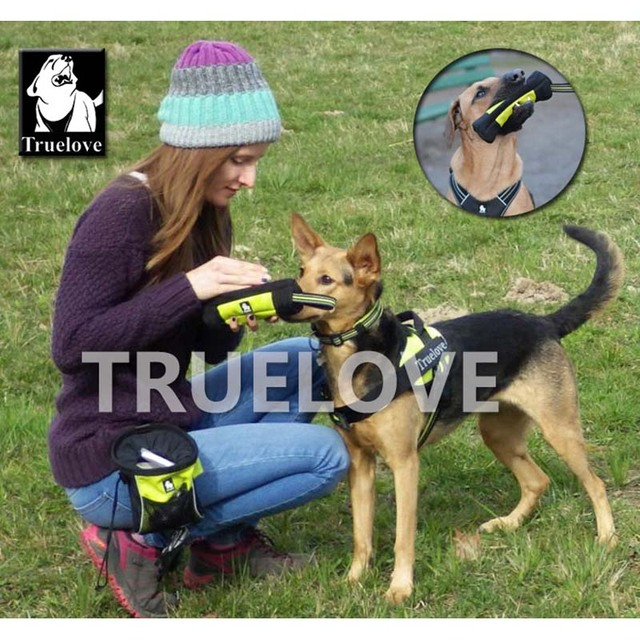Truelove Feed Dummy Dog Pet Treat Bag Reflective Dog Training Carry Treats Dog Toys Pet Feed Pocket Pouch Poop Bag Dispenser