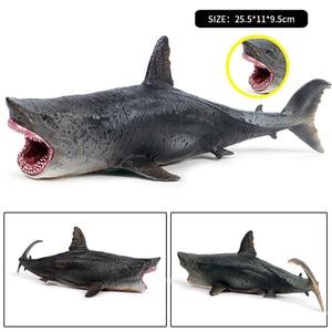 Image 5 - Oenux Meer Leben Marine Tiere Whale Shark Megalodon Modell Action Figure PVC Ozean Tier Pädagogisches Lernen Spielzeug Für Kind Geschenk