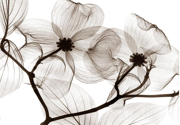 aliexpresscom buy black white flower 3d abstract photo mural wallcoverings wallpapers murals wall paper roll bedroom wall decor custom any size from