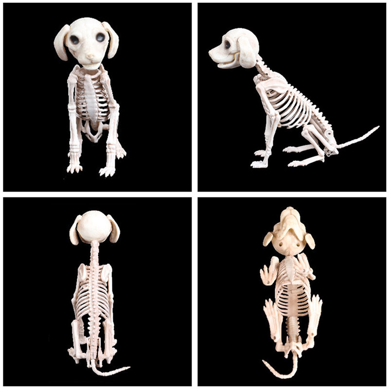 Halloween Decoration Props Animals Skeleton Mouse Dog Cat Skull Bone Ornaments Hallowmas Horror Haunted House Party Decoration (3)