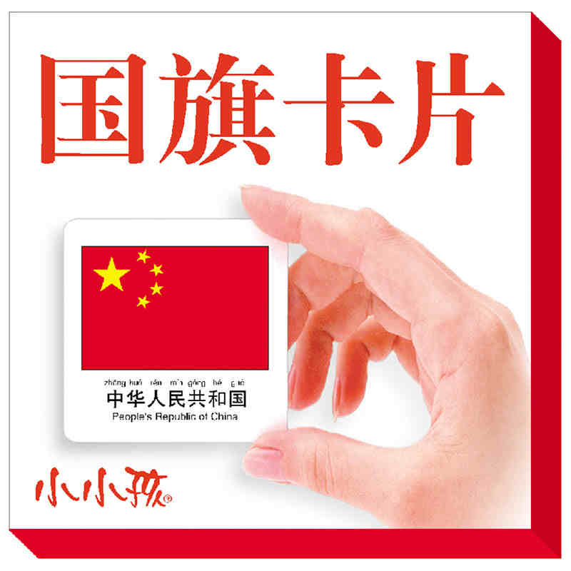 108 Country Flag Cards With The Pictures English And Pin Yin For Kids Children Learn Chinese Stroke,learn Hanzi Book