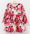 brand new 2016 baby girl clothesToddler hand painted princess dresses for girls baby girl party dress girl's flower dresses 2-12