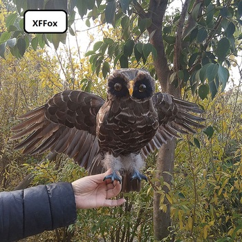 new simulation wings owl model foam&furs real life brown owl bird doll gift about 35x55cm xf1101