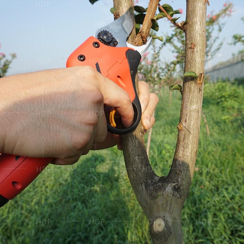 Foarfece de arbore fruct cu baterii de litiu cele mai bune - Unelte de gradina - Fotografie 3