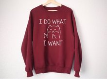 I Do What Want Cat Sweatshirt  lover gift Funny shirts Tumblr clothing funny sweatshirt for girl -E557