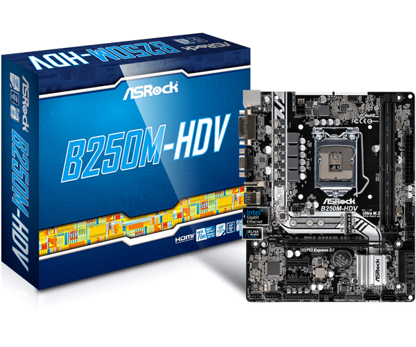 Detail Feedback Questions about ASRock B250M HDV motherboard