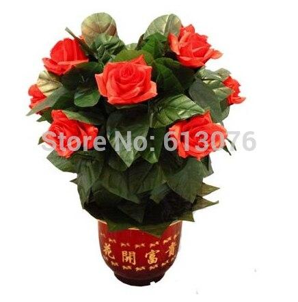 Brousse de Rose en fleurs, télécommande-10 fleurs-tour de magie, fleur magicclose up Magic