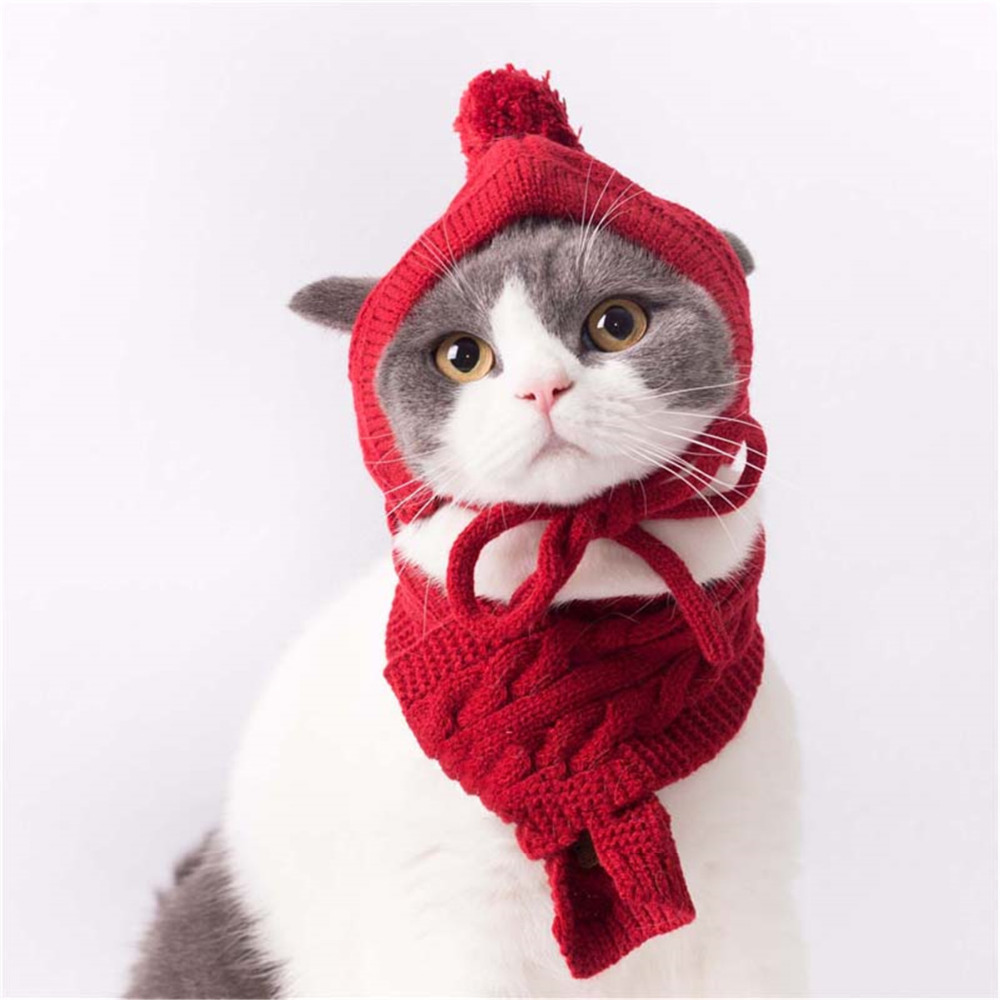 Winter Outfit For Pet Products Clothes Cat Collar Pets Product Dog Suit Cap And Scarf Shop Supplies Accessories Sweater Clothing