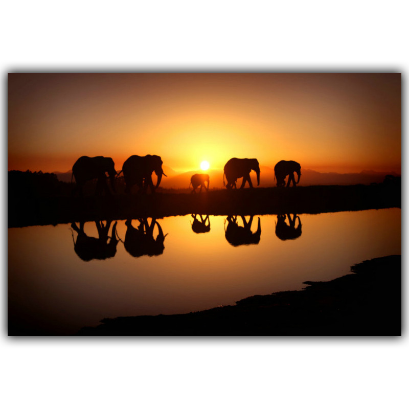 African sunset animal elephants silk painting poster 4 for African sunset wall mural