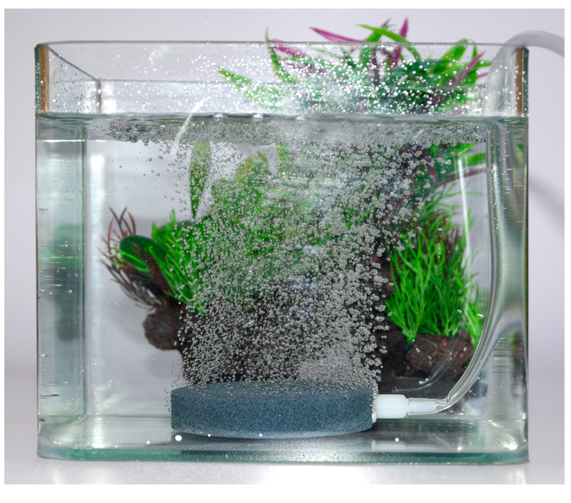 Aquarium Bubble Air Stone Beluchter Aquarium vijverpomp Hydrocultuur - Producten voor huisdieren - Foto 4