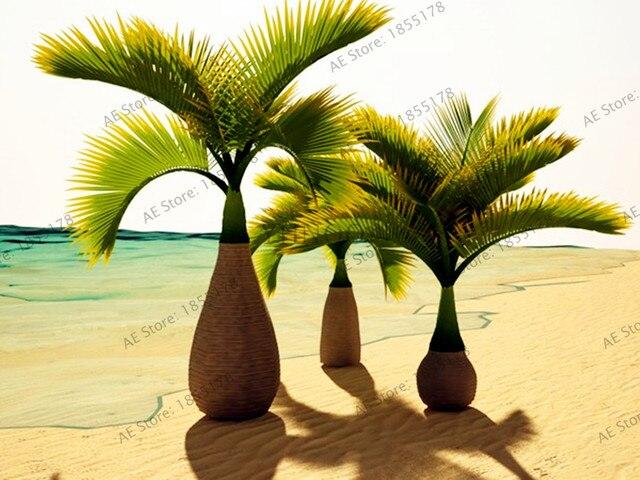 10 unids/pack botella Palm Tree semillas, perenne fácil crecer árbol ...