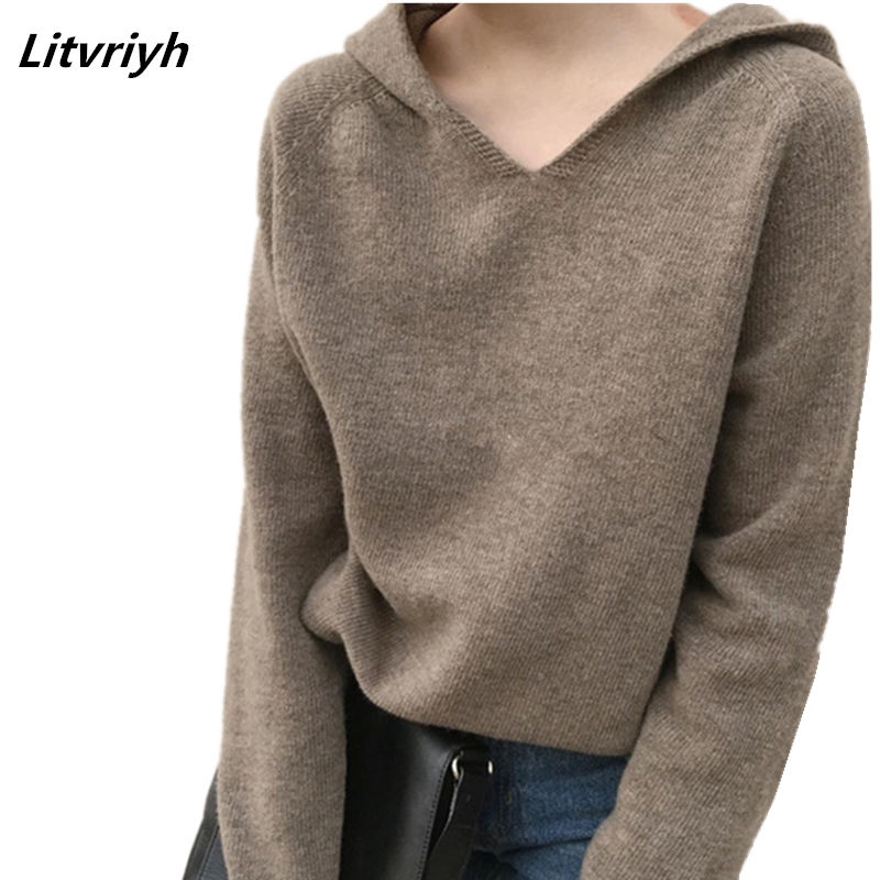 Litvriyh Autumn Winter New Women Sweaters And Pullovers Long Sleeve Hooded Warm Cashmere Sweater Women Pullovers Female Knitted