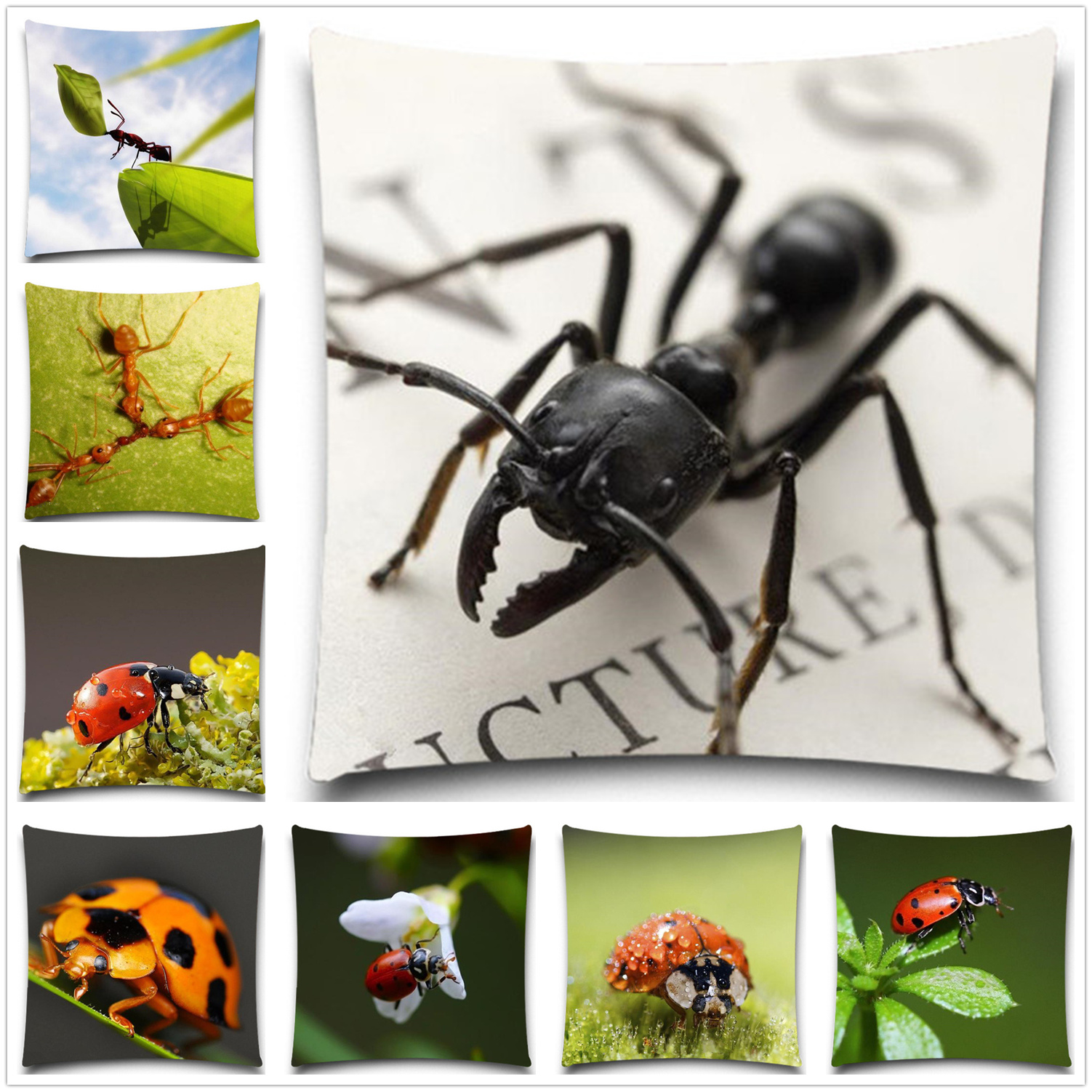 Ladybug Bedroom Online Get Cheap Ladybug Car Seat Aliexpresscom Alibaba Group