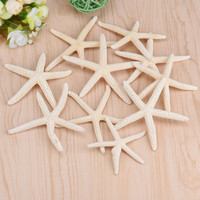 HappyKiss Creative 10 Pieces 6-10cm White Natural Finger Sea Star Starfish Wedding Decor Happy Gifts High Quality sea stars