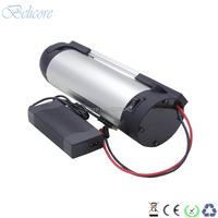 new bottle kettle electric bike battery 24v 12ah 13ah 15ah lady bike city e bike battery+3A charger for 250w 350w motor