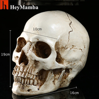 Halloween Props New Model Gifts Resin White Head Skull Small Human Skull Replica Haunted House Room Escape Horrible Supplies