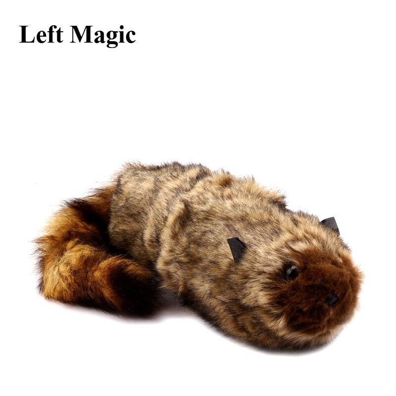 O Rocky Raccoon Ilusões de Magia Truques de Magia Fase de Robbie Rua Acessórios Prop Engraçado Aparecer Animais Primavera Magie Truque Brinquedo