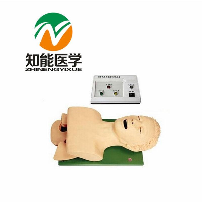 BIX-J5S Scienza Medica a Grandezza naturale Elettronico Airway Intubazione Modello G052BIX-J5S Scienza Medica a Grandezza naturale Elettronico Airway Intubazione Modello G052