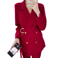 High-end large size suit female spring and autumn new tie with waist slimming temperament suit nine pants two sets AL913