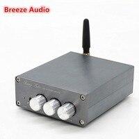 TPA3116 HiFi Mini Class 2 0 4 0 Bluetooth With High Bass Adjustment Digital Stereo Amplifier
