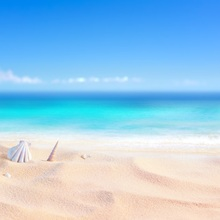 Tropical Sea Beach Sand Shell Coral Blue Sky Summer Holiday Baby Pet Scene Photographic Backgrounds Photo Backdrops Studio